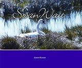 Swan Wait