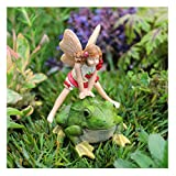 Miniature Fairy Garden Lori's Leap Frog 2pc Set Review