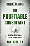 img - for The Profitable Consultant: Starting, Growing, and Selling Your Expertise book / textbook / text book