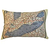 Lake Erie Vintage Map Pillow