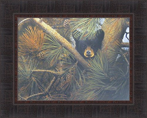 (High and Lonesome by Derk Hansen 17x21 Black Bear Cub Sitting In Pine Tree Framed Art Print Wall Décor Picture)