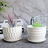 Mini Ceramic Planters, Brajttt 4 Inch Cylinder