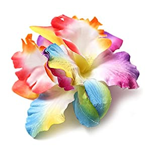 SODIAL(R) 2 X Orchid Flower Floral Hair Clips Bridal Wedding Party Bridesmaids Accessory Color:Rainbow (2Pcs) 91