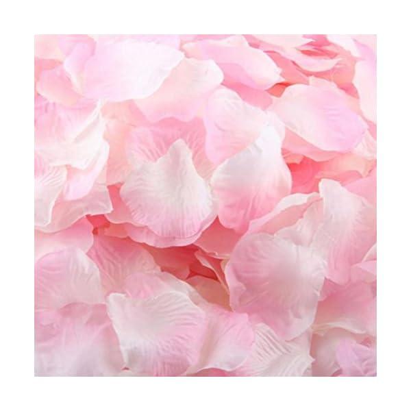 Silk Wedding Petals