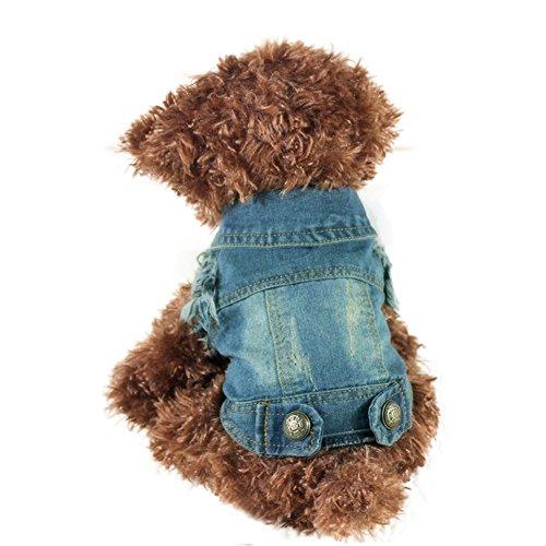 iiniim Pet Dog Costume Blue Jeans Lapel Coat Jumpsuit Clothes (M) (Minion Dog Costumes)