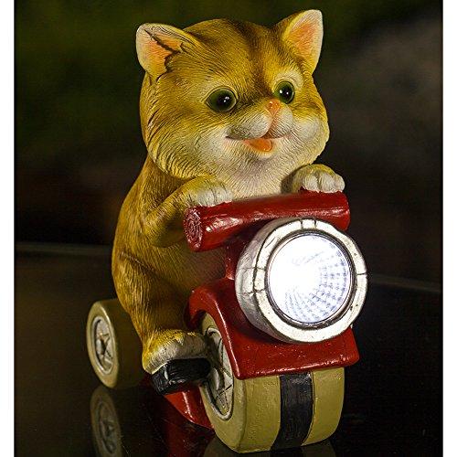 Outdoor Solar Cat Light