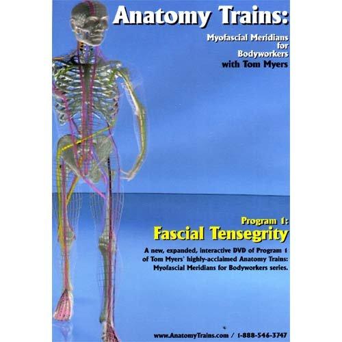 Anatomy Trains Myofascial Meridians For Bodyworkers Program 1