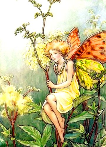 Counted Cross Stitch Pattern: The Queen of the Meadow Fairy by Cicely Mary Barker, PROFESSIONALLY EDITED Fairies: Flower Fairies (The Flower Fairy Series)