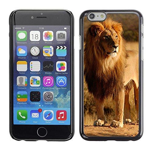 """Premio Sottile Slim Cassa Custodia Case Cover Shell // V00003487 roi de la jungle // Apple iPhone 6 6S 6G PLUS 5.5"""""""