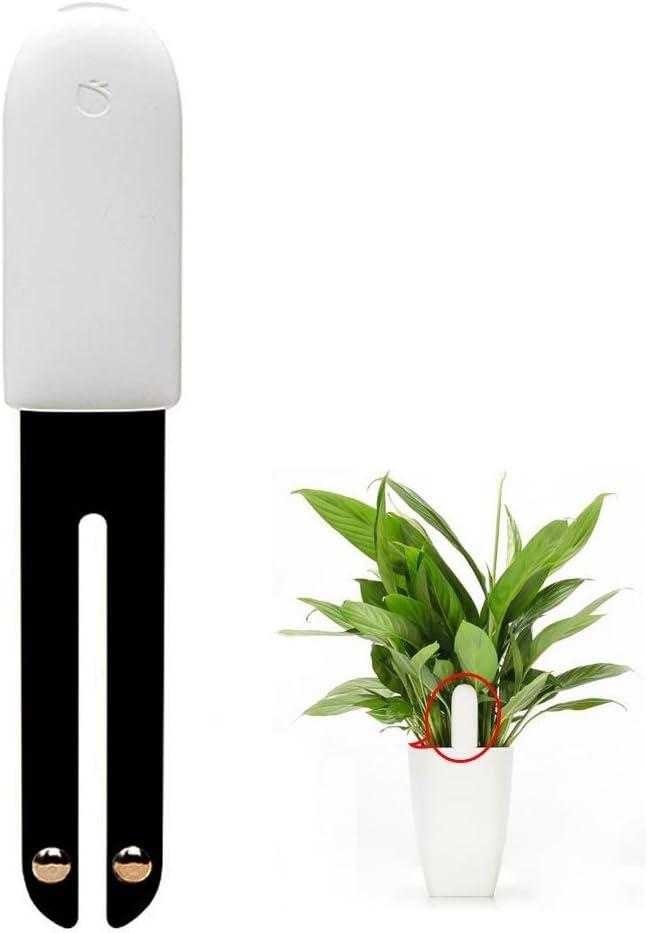 Dio dekorativer ausgefallener Garten-Stecker Deko-Stecker Elfe Metall rostig Preis f/ür 2 Stck.