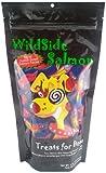 WildSide Salmon Jumbo Dog Treats – 4 oz., My Pet Supplies