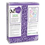Carefresh 99% Dust-Free Playful Purple Natural