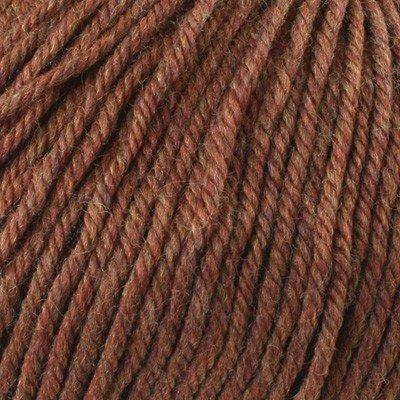 Cascade Yarns - Cascade 220 Yarn Superwash Yarn #1920 Pumpkin Spice