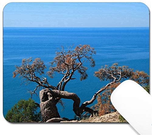 - MSD Mouse Pad with Design - Non-Slip Gaming Mouse Pad - Image ID 19986538 Sea Landscape