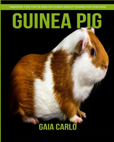 Guinea pig: Amazing Fun Facts and Pictures about Guinea pig for Kids