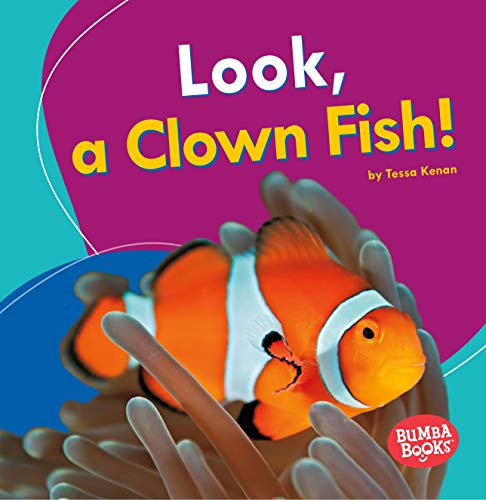 Look, a Clown Fish! (Bumba Books: I See Ocean Animals)