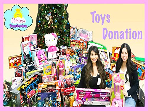 Clip: Huge Toys Donation with Princess ToysReview