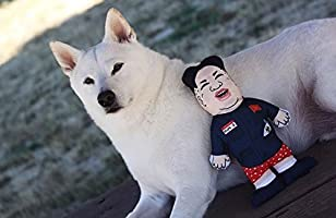 Amazon.com: OMG doy juguetes Evil Dictador Kim Jong Un ...