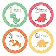 Pinkie Penguin Dinosaur Baby Monthly Stickers - Milestone Onesie Stickers - 1-12 Months