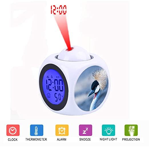 FDC - Despertador con proyector y Pantalla LCD LED (función de ...