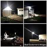Bobcat LED Area Light 110 Watts - Outdoor Yard