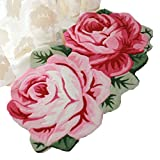 MeMoreCool Pink Roses Area Rugs Elegant Anti-slip Carpet Bedroom/Living Room/Bathroom/Kitchen Home Decoration Washable Rugs Welcome Rug for Front Door Greet Guests At Every Entrance Review