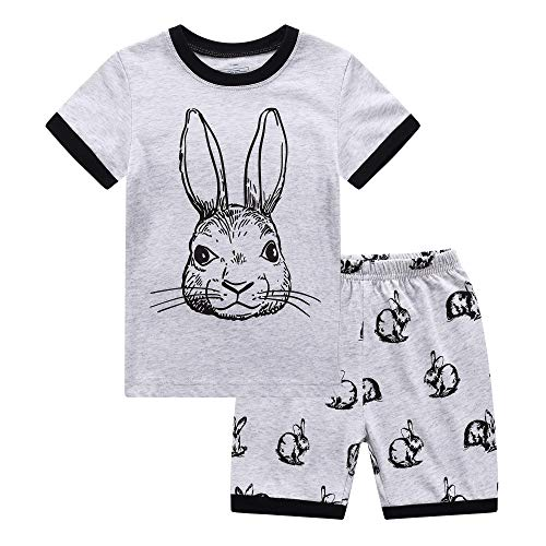 RKOIAN Little Boys Short Pajamas Sets Toddler PJS Cotton Kids Sleepwears (Gray Rabbit, 3T)