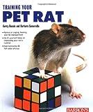Training Your Pet Rat