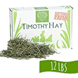 Small Pet Select 12-Pound 2nd Cutting Timothy Hay ...