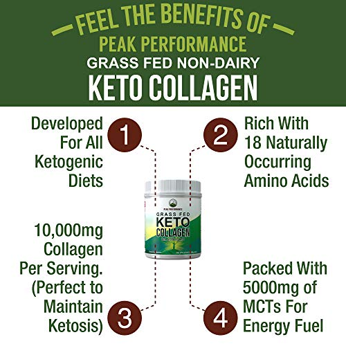 Unflavored Keto Collagen Protein Powder and MCT Oil Powder. Perfect 2:1 Ratio Zero Carb Protein with 10,000mg Collagen Peptides + 5000mg MCT Oil Powders. Keto Meal Replacement Shake for Ketogenic Diet