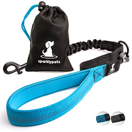3 in 1 Short Dog Leash - Shock-Absorbing Bungee with Padded Handle - Elastic Attachment for Your Regular Leash, Control Handle, or Traffic Leash – Suitable for Medium and Large Dogs (Blue)