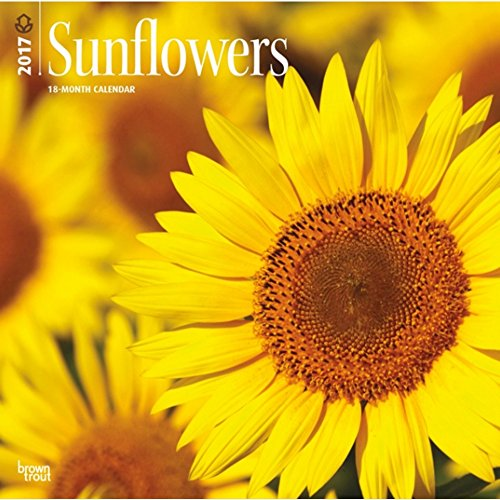 "Sunflowers 2017 Wall Calendar 12"" x 12"""