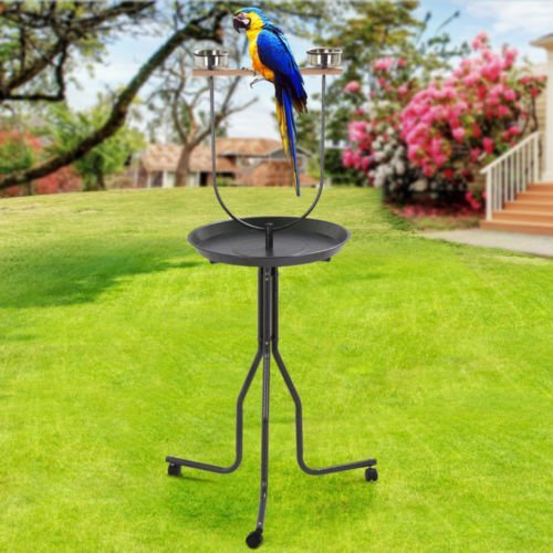 2017 Large Bird Play Stand Pet Gym Parrot Cockatoo Wood Perch Metal Wheel Bowls by Unknown