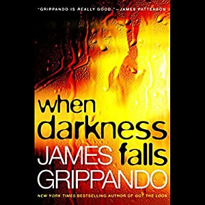 When Darkness Falls Audiobook