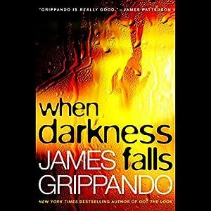 When Darkness Falls Audiobook