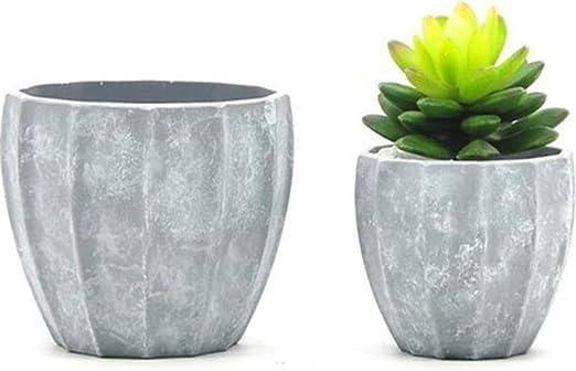 LiyuAI Maceteros, Plantas en macetas verdes de color cemento ...