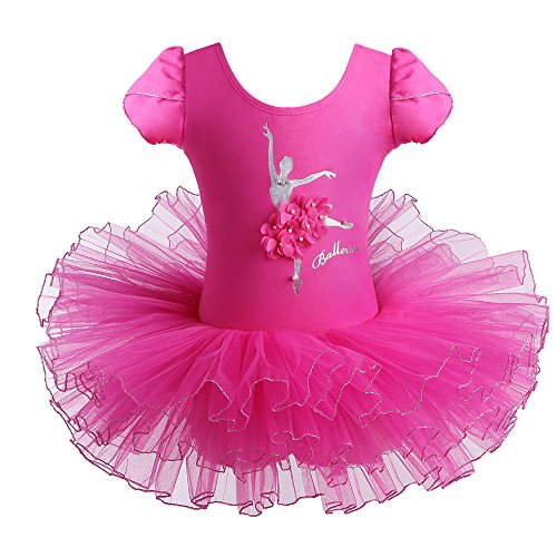 BAOHULU Girls Ballet Dance Tutu Dress Short Sleeve Ballerina Costumes Skirted Leotard (6-7 Years(Tag No.XXL), HotPink -