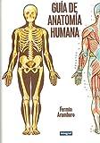 img - for Guma de Anatomma Humana (Spanish Edition) book / textbook / text book