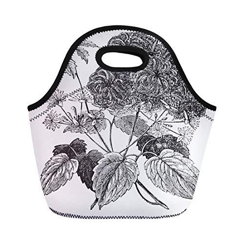 (Semtomn Lunch Bags Devil Darning Needles Hair Love Vine Traveller Joy Virgin Neoprene Lunch Bag Lunchbox Tote Bag Portable Picnic Bag Cooler Bag )
