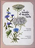 A Sampler of Wayside Herbs, Barbara Pond, 0856990965