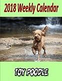 2018 Weekly Calendar Toy Poodle