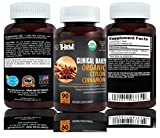 Cheap CLINICAL DAILY Organic Ceylon Cinnamon Tablets. USDA CERTIFIED. Nature's Blood Sugar & Healthy Heart Antioxidant, Joint Anti-Inflammatory health supplement. 90 Vegetarian tablets, Complete Dissolution