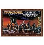 Games Workshop Warhammer Fantasy Dark Elf Black Ark Corsairs