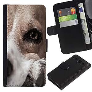 Dog Canaan Pointer Golden Retriever - la tarjeta de Crédito Slots PU Funda de cuero Monedero caso cubierta de piel Samsung Galaxy S3 III I9300