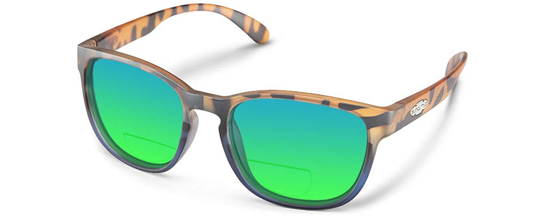 Amazon.com: Suncloud Loveseat polarizado anteojos bifocales ...