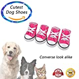 ✔️Cute Pink Converse Look A Like Dog Shoes ✔️Premium Quality Pet Dog Puppy