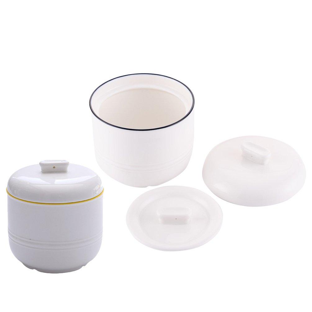 2パックSmallセラミックStew Pot with Lid蒸気スープボウルSteaming Cupホームキッチンの卵カスタードMedicinal Herbs Bird 's Nest Tonic、オーブン食器洗い機、400 ml B07CGYZX4D