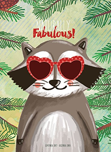 2018 Fabulous Raccoon Monthly - Sunglasses Monthly