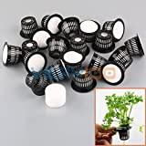 Best Garden Tools 20Set Dia.43mm Mesh Pot Net Basket+Clone Collar Foam Insert Hydroponic Aeroponic Plant