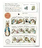 : The Peter Rabbit Library: 12 Book Box Set by Beatrix Potter
